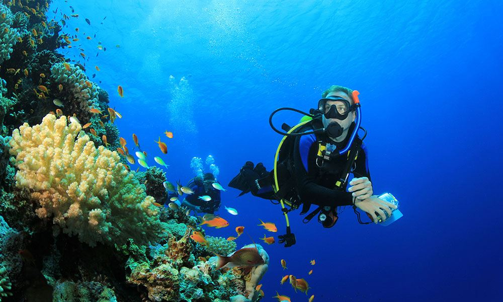 Diving in Hurghada 3 Days Package from shore or boat