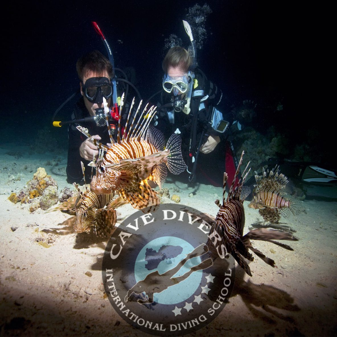 Night Diver Specialty Course in Hurghada Red Sea